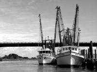 UK fishing industry.