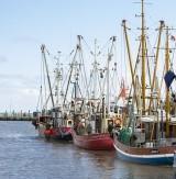 Fishing trawlers.